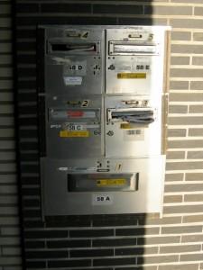 DSCN2092 (480x640)
